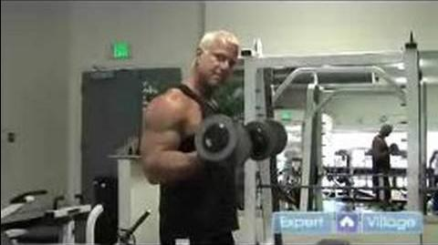 Weight Lifting Exercises for Beginners Dumbbell Biceps Curl Weight Lifting Exercise for Beginners