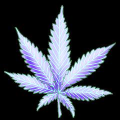 File:Cannabis crystal rain.png