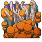 Ancient Fungus Spores
