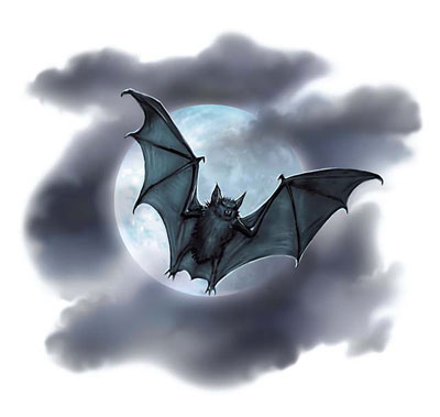 File:Bat - Anne Stokes.jpg