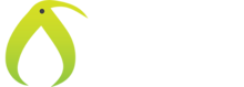 Kiwi light