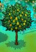 Aurablue tree