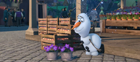 Olaf and flowers