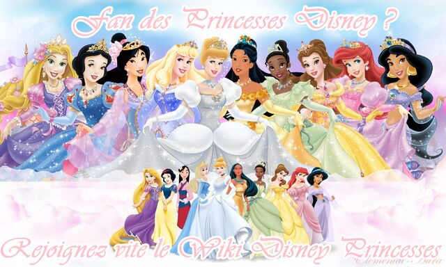 Fichier:Wiki Disney Princesses.jpg