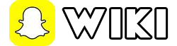 Fichier:Logowiki.png