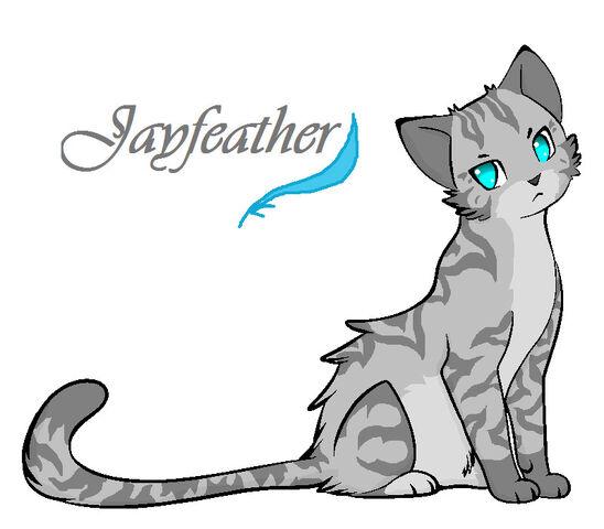 Fichier:Jayfeather.jpg