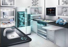 Future kitchen...