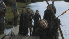 Edmure arrow