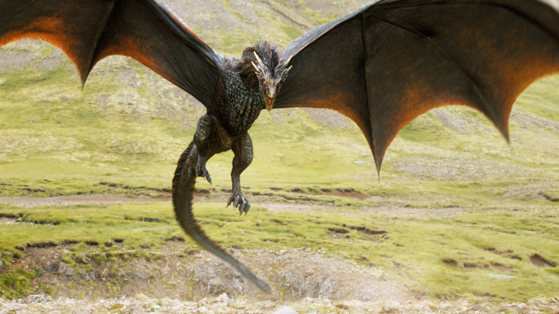 dragons game of thrones wiki fandom powered by wikia