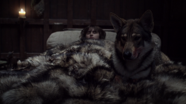 File:Bran and Summer s1 in winterfell.png