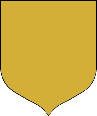File:Gold-Cloak-Shield.PNG