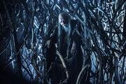 Game-of-thrones-season-4-finale-tree-man.jpg