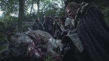 Mother of direwolves.jpg