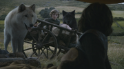 Rickon wakes up shocked