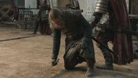Eddard injured