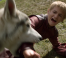 Nymeria (direwolf)