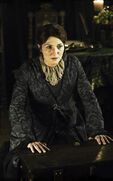 Catelyn-stark-michelle-fairley-helen-sloan