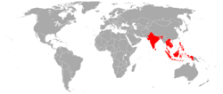 Bird's eye chilli geographical distribution