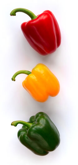 Sweet pepper Bell pepper