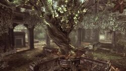 Garden Map Gears of war