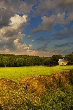 Douglas County Kansas USA