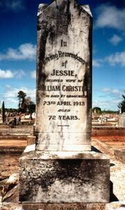 Jessie Balgowan (1840-1913) tombstone