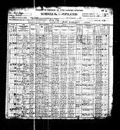 1900 census Langan 1
