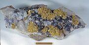 Gold sphalerite quartz sacaramb