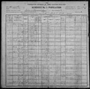 Census of Lake Township Wabasha County Minnesota 1900 pg04