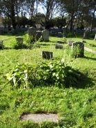 Freudenberg-Helen grave 04