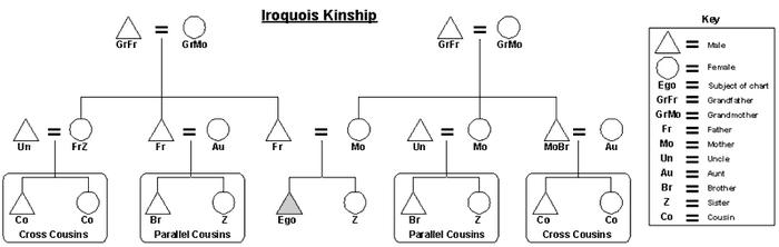 Iriquois-kinship-chart