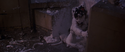 GB1film1999chapter28sc047