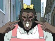 Kondo gorilla
