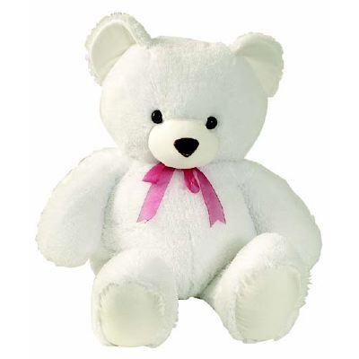 File:Teddy1.jpg