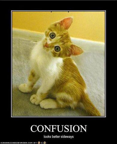 File:Confusion.jpg