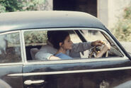 Michael teach apollonia how to drive