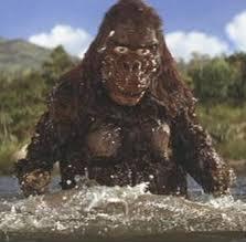 File:Kong Water Suit 2.jpg