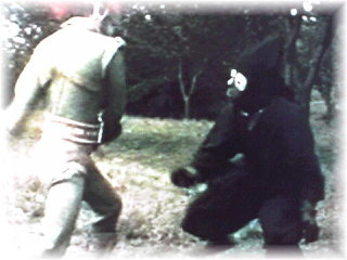 Greenman - Monsters - Ninja Phantom