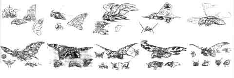 File:Concept Art - Rebirth of Mothra 3 - Mothra Leo 1.png