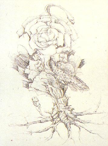 File:Concept Art - Godzilla vs. Biollante - Biollante Rose 11.png