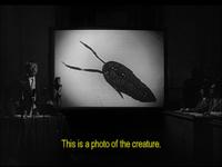 Godzilla54 - Trilobite