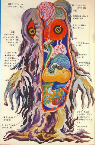 File:Hedorah Anatomy.png