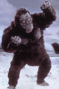 King Kong3