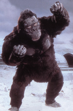 File:King Kong3.jpg