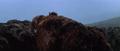 King Kong vs. Godzilla - 68 - Facerocked