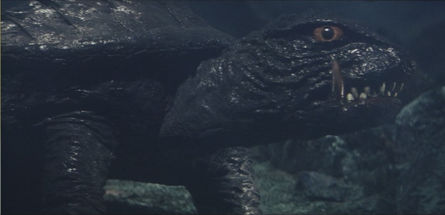 File:Gamera - 4 - vs Viras - 4 - Gamera reappears.png