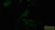 Screen Shot 2014-09-30 at 2.44.54 pm