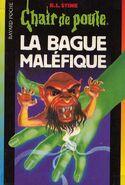 Horrorsoftheblackring-french1