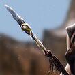 Obara's Spear