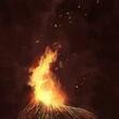 Flickering Fire
